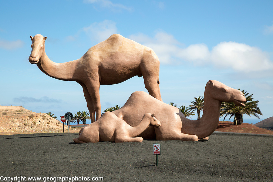Giant camels on roundabout near Uga, Yaiza, Lanzarote, Canary Islands, Spain