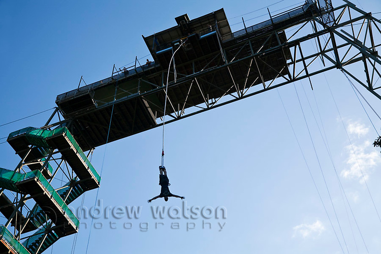 Man bungy jumping from bungy tower.  Smithfield, Cairns, Queensland, Australia