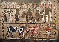 Ancient Egyptian wall paintings of the Tomb of Iti and Neferu, Mourning Scene, Thebes, First Intermediate Period (2118 – 1980BC). Egyptian Museum, Turin. Schiapelli excavations cat 1435.<br /> <br /> In the lower register a cattle driver leads two cattle of different colours.<br /> These tempera paintings were on a crude mud and straw plaster and were of typical Old Kingdom tombs showing ritual offering scenes. The tomb was partly cut into rock with mud brick walls and vaults. The facade of the tomb had 16 columns looking over a courtyard sloping towards the valley.