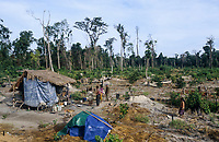 CAMBODIA, Mekong region, Stung Treng, logging of rainforest, poor people settle on deforested plots and start farming
