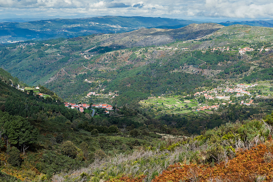The Douro Valley in northern Portugal is the oldest demarcated wine growing region in the world.