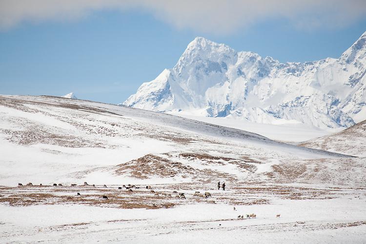 Tibetan hearders with Shisha Pangma in the background.