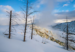 Yellowstone National Park, Wyoming:<br /> Mammoth Hot Springs, winter