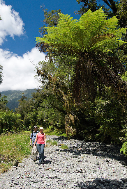 Two people under the tree fern walking in the dry creek bed near Whataroa - Westland National Park