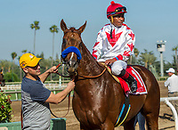ARCADIA, CA APRIL 22:  #1 Collected ridden by Martin Garcia, after winning the Californian Stakes (Grade ll) on April 22, 2017 at Santa Anita Park in Arcadia, CA.(Photo by Casey Phillips/Eclipse Sportswire/Getty Images)
