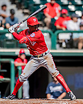 25 February 2019: Washington Nationals outfielder Victor Robles in action during a pre-season Spring Training game against the Atlanta Braves at Champion Stadium in the ESPN Wide World of Sports Complex in Kissimmee, Florida. The Braves defeated the Nationals 9-4 in Grapefruit League play in what will be the Braves' last season at the Disney / ESPN Wide World of Sports complex. Mandatory Credit: Ed Wolfstein Photo *** RAW (NEF) Image File Available ***