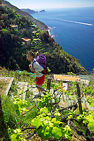 Punta di monesteroli, Cinque Terre, Liguria, Italy, May 2005. Built against the steep cliffs of the Ligurian coast of Italy, lie the five villages of the Cinque Terre. Ancient hiking trails connecting the villages offer some of Italy's most spectacular views. Photo by Frits Meyst/Adventure4ever.com