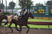 CERRITOS, CA  JULY 24: #4 Marley's Freedom, ridden by Drayden Van Dyke, in the stretch of the Great Lady M Stakes (Grade ll) by open lengths on July 7, 2018, at Los Alamitos Race Course in Cerritos, CA.  (Photo by Casey Phillips/Eclipse Sportswire/Getty Images)