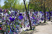 Memorial fence covered with purple balloons, flowers & other Prince memorabilia Paisley Park Studios Chanhassen Minnesota MN USA
