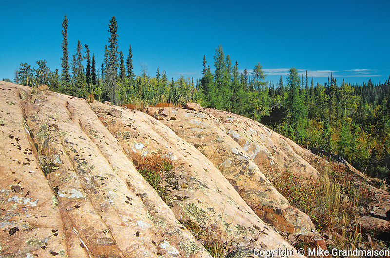 Precambrian shield and boreal forest<br />  Yellowknife Highway<br /> Northwest Territories<br /> Canada