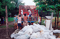 bags of eggs of olive ridley sea turtle, Lepidochelys olivacea, are loaded into truck for transport during controlled, legal harvest, Playa Ostional, Costa Rica, Pacific Ocean