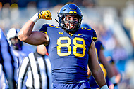 Morgantown, WV - NOV 10, 2018: West Virginia Mountaineers tight end Trevon Wesco (88) celebrates picking up a first down late in the 3rd quarter of game between West Virginia and TCU at Mountaineer Field at Milan Puskar Stadium Morgantown, West Virginia. (Photo by Phil Peters/Media Images International)