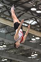 Gymnast Factory