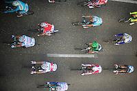 peloton from above<br /> <br /> 102nd Scheldeprijs 2014