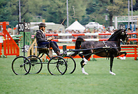 Horse and carriage being driven in equestrian competition in Windsor Great Park, UK