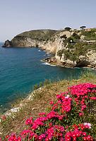 ITA, Italien, Kampanien, Ischia, vulkanische Insel im Golf von Neapel:  |  ITA, Italy, Campania, Ischia, volcanic island at the Gulf of Naples:
