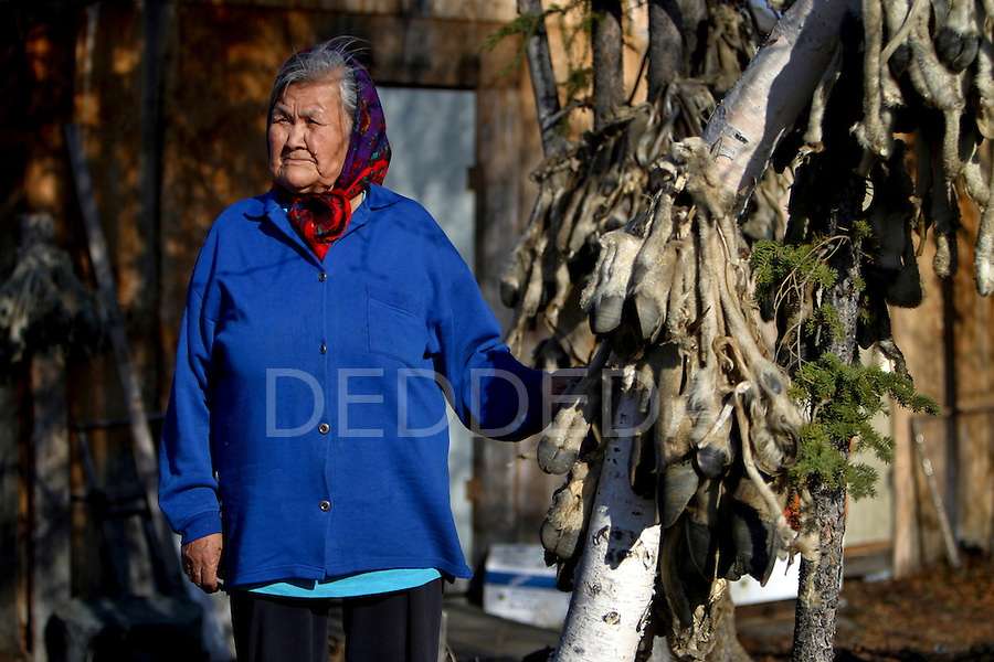 Vuntut Gwitchin First Nation elder, Fanny Charlie, stands next to a tree of hanging, tied caribou legs in her yard, in the native village of Old Crow, Yukon Territory. The raw bone marrow in the legs is used as food, and the fur is utilized to make clothing.