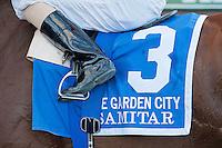 Samitar, Ramon Dominguez up, wins the 2012 GI Garden City Stakes.
