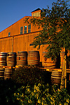 Wine barrels at sunrise, Bouchaine, Carneros Region, Napa Valley, Napa County, California