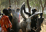 South Sudan (Rumbek, Mvolo, Mundri, Kotobi, Juba, Malaria, NGOs, Public Health, People, Cultures)