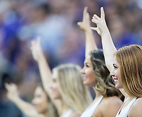 Husky cheerleaders root on the Dawgs.