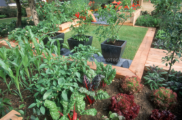 home vegetable garden, Natural flower