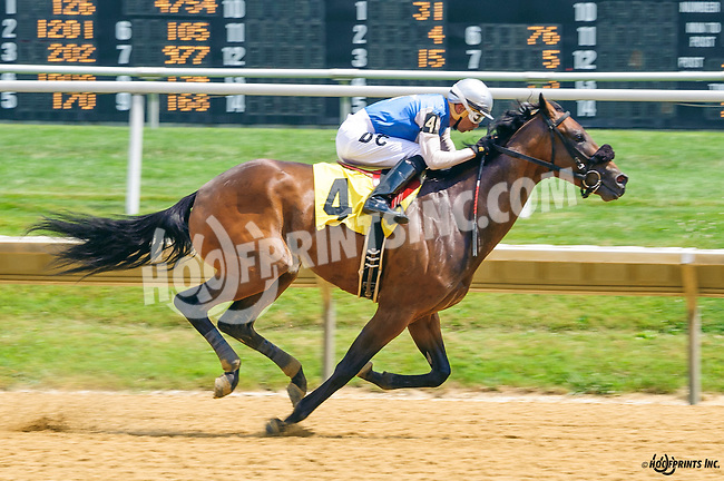 Unblunted winning at Delaware Park on 7/18/16