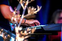 Tu Tilley perform at Paekakariki Waitangi Day 2020 Celebrations at Campbell Park in Paekakariki, New Zealand on Wednesday, 5 February 2020. Photo: Dave Lintott / lintottphoto.co.nz