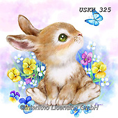 Kayomi, EASTER, OSTERN, PASCUA, paintings+++++,USKH325,#e#, EVERYDAY ,rabbits