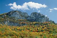 Seneca Rocks,  Spruce Knob-Seneca<br />   Rocks National Recreation Area<br /> Monongahela National Forest<br /> Allegheny Mountains,  West Virginia