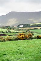 Irish Farm