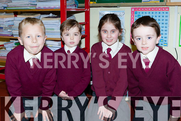 Sean Barry, Jack O'Shea, Alisha O'Sullivan-Reidy and Brian O'Leary at the Knockaderry NS open evening on Friday