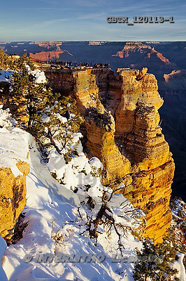 Tom Mackie, CHRISTMAS LANDSCAPE, photos,+America, American, Arizona, Grand Canyon National Park, North America, US, USA, United States, United States of America, gran+d view, holiday destination, icon, iconic, landmark, landmarks, national park, natural wonder of the world, portrait, snow, s+now-covered, upright, vertical, weather, winter, wonder,America, American, Arizona, Grand Canyon National Park, North America+, US, USA, United States, United States of America, grand view, holiday destination, icon, iconic, landmark, landmarks, natio+,GBTM120113-1,#xl#