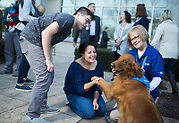 NWA Democrat-Gazette/CHARLIE KAIJO Adela Smalley (center) of Rogers plays with Honey the therapy dog also shown with Lathan Smalley, 14, (left) and volunteer Beth Robinson (right), Thursday, November 29, 2018 at Mercy Hospital in Rogers.<br />