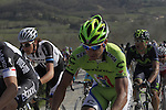 The peloton including Peter Sagan (SVK) Cannondale tackle the 7th sector of strade the climb of Monte Sante Maria during the 2014 Strade Bianche race over the white dusty gravel roads of Tuscany running 200km from San Gimignano to Siena, Italy. 8th March 2014.<br /> Picture: Eoin Clarke www.newsfile.ie