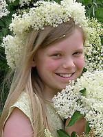 Mädchen, Kind erntet Holunder-Blüten, Holunderblütenernte, mit einem Blütenkranz aus Holunderblüten auf dem Kopf, Schwarzer Holunder, Sambucus nigra, Fliederbeeren, Fliederbeere, Common Elder, Elderberry, Sureau commun, Sureau noir