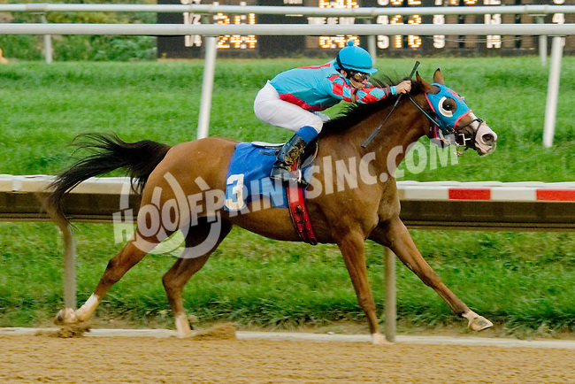 Adios Vacqauero winning. at Delaware Park on 9/6/12