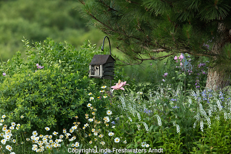 Garden flowers and ornamental bird house