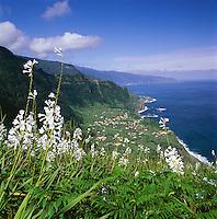 Portugal, Madeira, Arco De Sao Jorge at North Coast | Portugal, Madeira, Arco De Sao Jorge an der Nordkueste