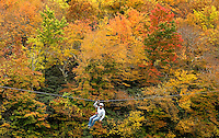 Hawksnest Ziplines in Seven Devils, North Carolina offers it's riders  a beautiful glide through the Fall leaf foliage of the North Carolina mountains (Blue Ridge Parkway) in autumn 2013, when the mountain forests and trees transform themselves a tapestry of brilliant orange, red and yellow autumn colors.