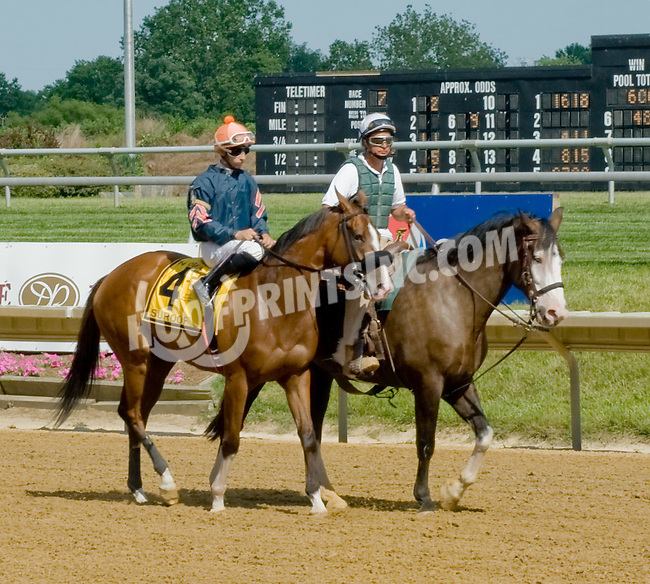 Suroff before The Obeah Stakes (gr3) at Delaware Park on 6/16/12