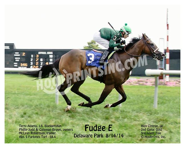 Fudge E winning at Delaware Park on 8/14/14