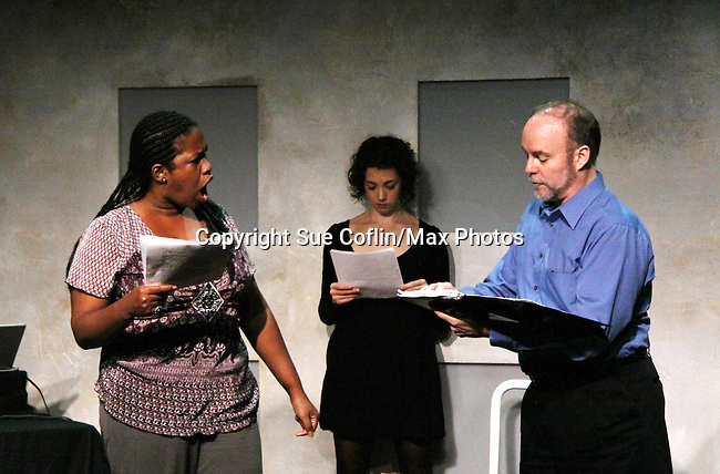 "Richard Kent Green, Cecily Benjamin and Amanda Sayle in ""Verbatim Verboten - NYC"" on October 18, 2010 at the WorkShop Theater, NYC. (Photo by Sue Coflin/Max Photos)"