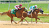 Memorys N Dreams winning at Delaware Park on 7/20/16