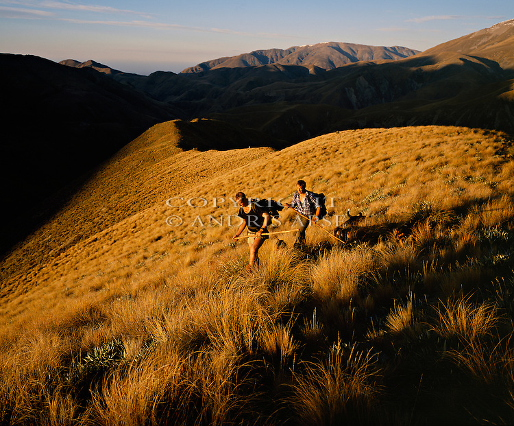 Musterers on Glenrock Station. Upper Rakaia Valley. Canterbury New Zealand.