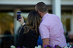 February 8, 2020: Scenes from Festival Preview Day presented by Lambholm South at Tampa Bay Downs on February 8, 2020 in Tampa, FL. (Photo by Carson Dennis/Eclipse Sportswire/CSM)