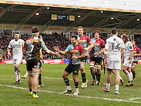 Celebrations after Jack Clifford scores a try, Harlequins v Cardiff Blues in a European Challenge Cup match at Twickenham Stoop, Twickenham, London, England, on 17th January 2016