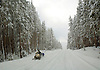 A SNOWMOBILER MAKES THEIR WAY THROUGH THE SNOW-COVERED ROADS OF YELLOWSTONE NATIONAL PARK,WYOMING