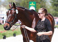 LEXINGTON, KY - April 26, 2017. #34 Pavarotti and Jessica Phoenix from Canada at the Rolex Three Day Event First Horse Inspection at the Kentucky Horse Park.  Lexington, Kentucky. (Photo by Candice Chavez/Eclipse Sportswire/Getty Images)
