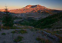 Mount St. Helens at sunset, viewed from Boundary Trail - horizontal. Washington State.